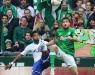 1. Bundesliga 12/13 - SV Werder Bremen vs. FC Schalke 04.